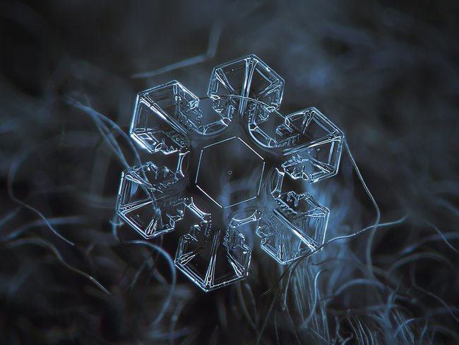 snow1.jpg.650x0_q85_crop-smart